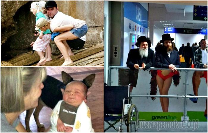 Правильный ракурс и момент: 17 случайных снимков, которые заставят посмеяться от души