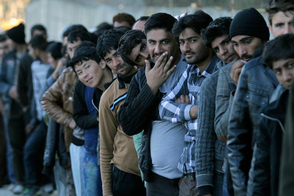 Мигранты это в картинках