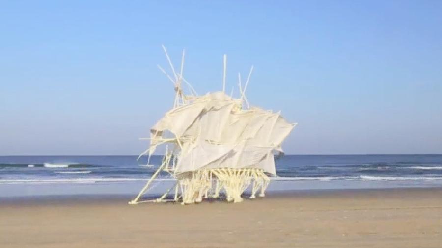 Ну и гаджеты: механические пляжные животные, машина на вырост и раздельная звуковая волна
