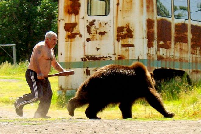 Встреча с медведем: как себя вести