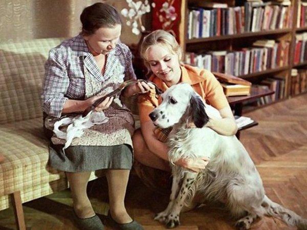 «Белый Бим Черное ухо» — шедевр советского кино семидесятых