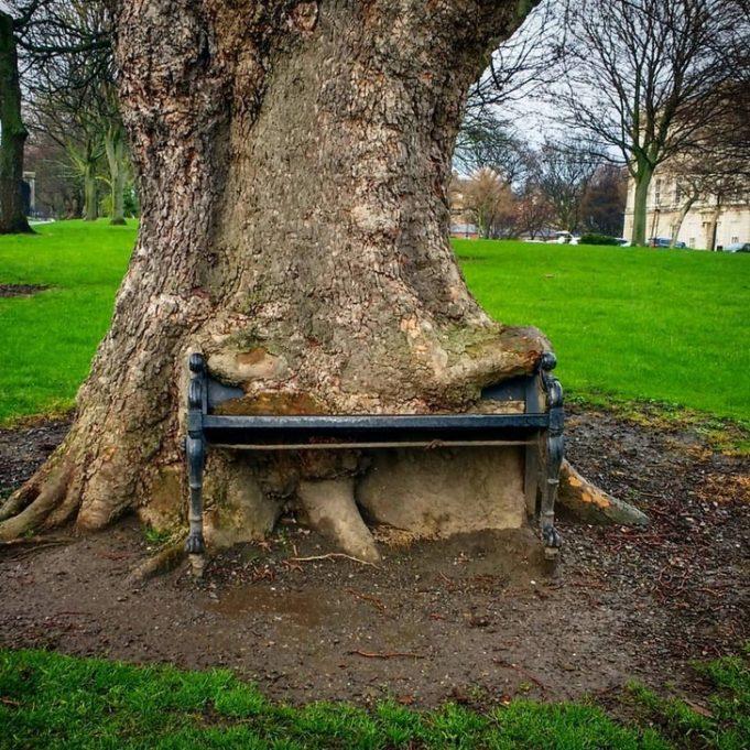 Самые необычные уличные скамейки