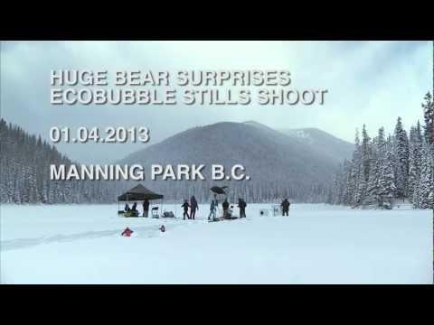 Медведь постирал шкуру в машинке Samsung