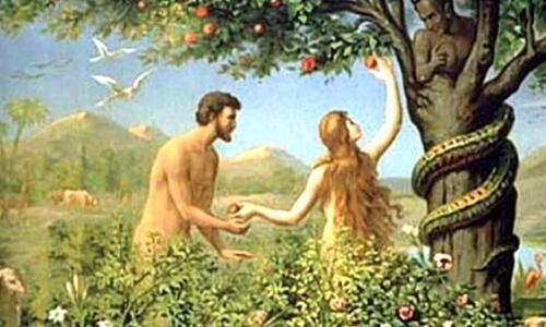 Адам или Ева: кто жил дольше
