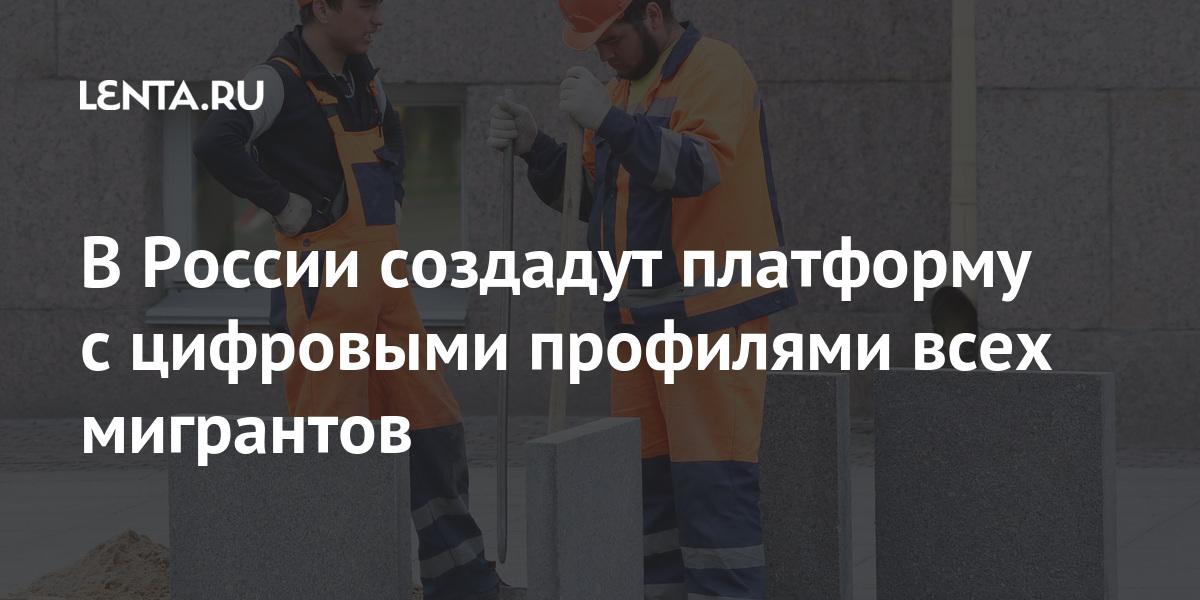 В России создадут платформу с цифровыми профилями всех мигрантов Россия