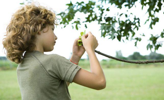 Охрана окружающей среды для детей