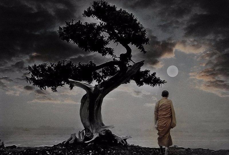 Три буддистские истины, после которых вас «отпустит»