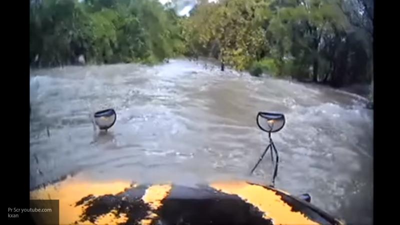 Видео: Техасский водитель школьного автобуса плавал по затопленной дороге, пока не застрял в кустах