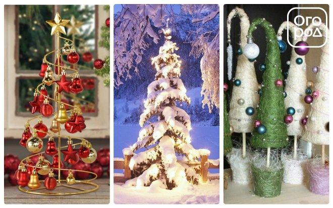 елки для нового года