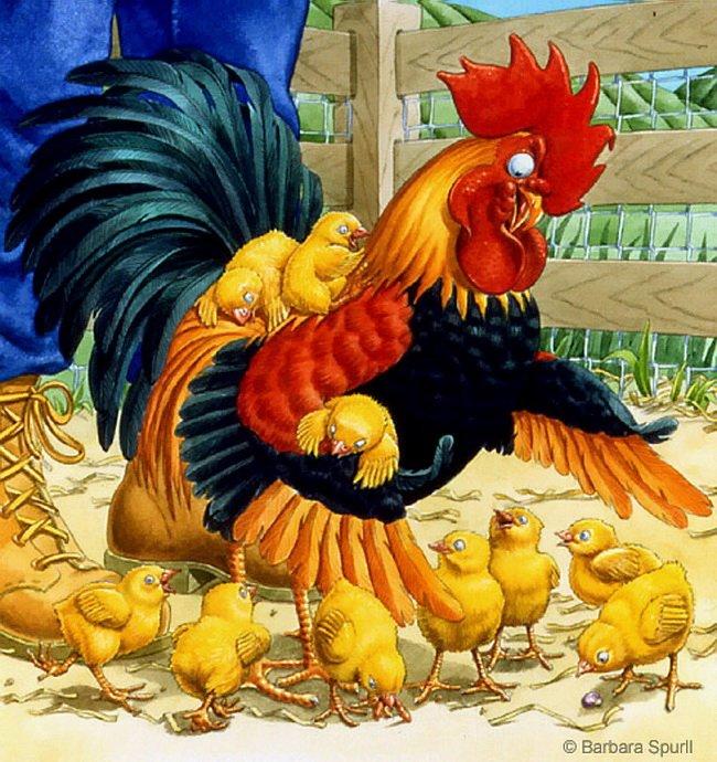 Изготовить, картинки курица с цыплятами и петухом для детей