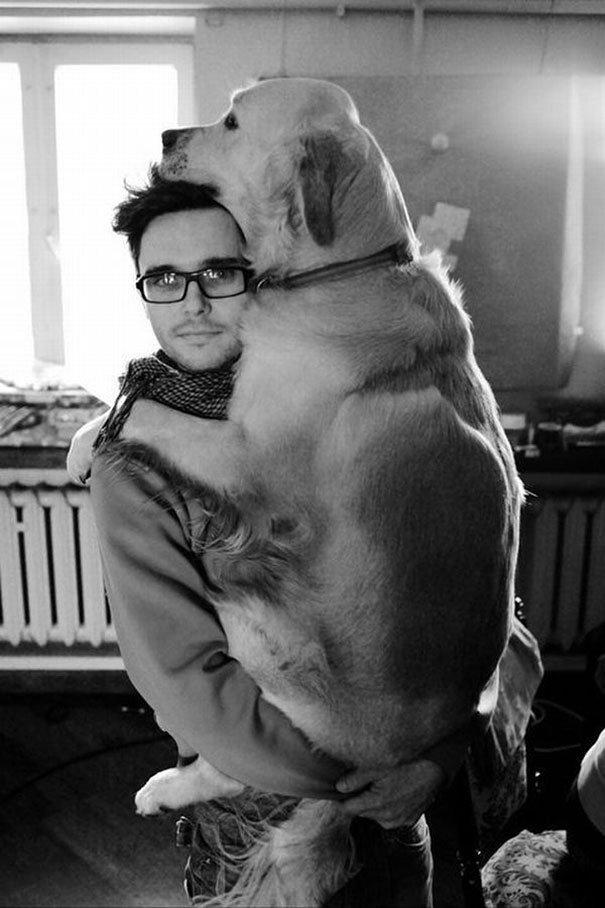 милые собаки обнимают своих хозяев (3)