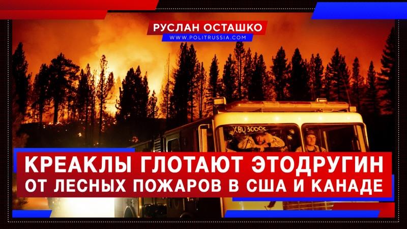 Креаклы глотают Этодругин, слыша о лесных пожарах на Западе