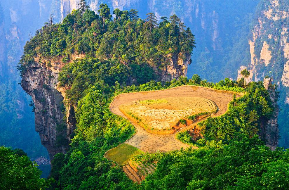 Кто-то умудрился организовать небольшое фермерское хозяйство на вершине скалы