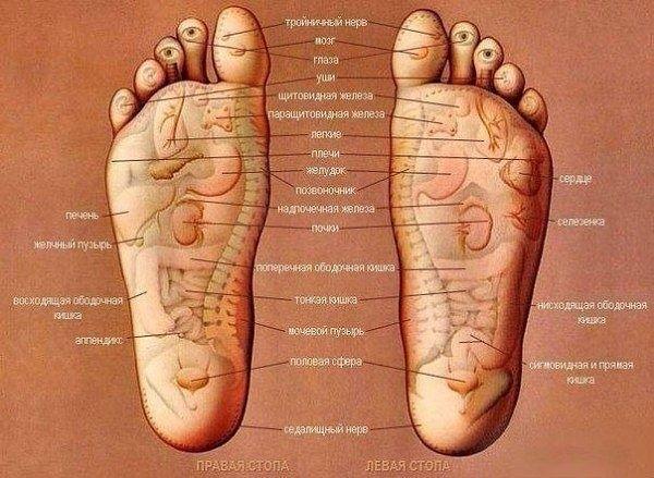Схема массажа стоп