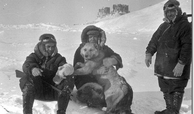 Как советская экспедиция соз…