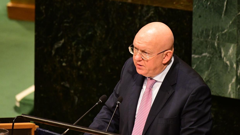 Постпреда РФ возмутила попытка помешать выступлению Сирии в Совбезе ООН