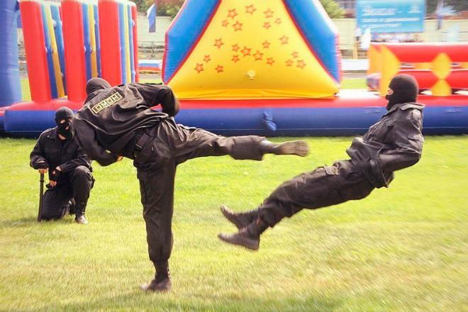 Как спецназовцы останавливают противника одним ударом