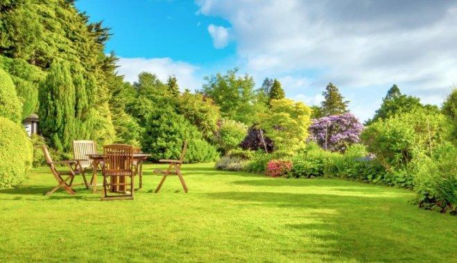 5 способов зрительно увеличить маленький сад, которыми вы не пользуетесь