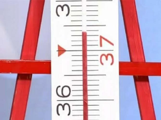 О чем говорит температура 37,3?