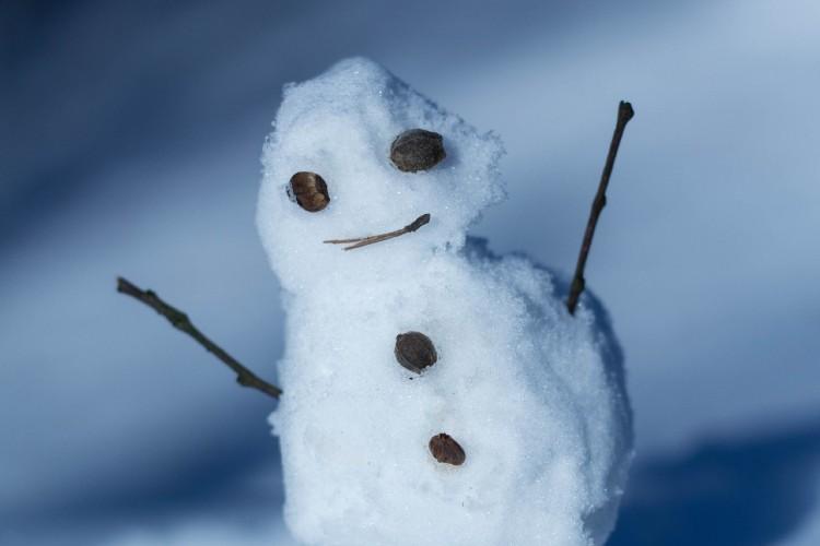 Врачебное мнение: какие опасности таит в себе теплая бесснежная зима