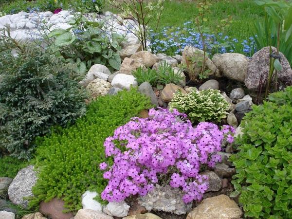 Сад камней: идеи для самых ленивых дачников