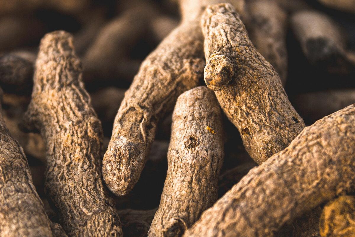 Корни куркумы, из которых делают порошок © ANDY HYD/UNSPLASH