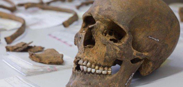 Один из них история, мумии, наука, скелеты