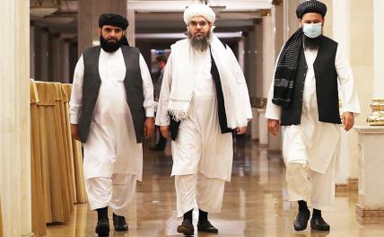 Зачем талибы прилетели в Москву геополитика