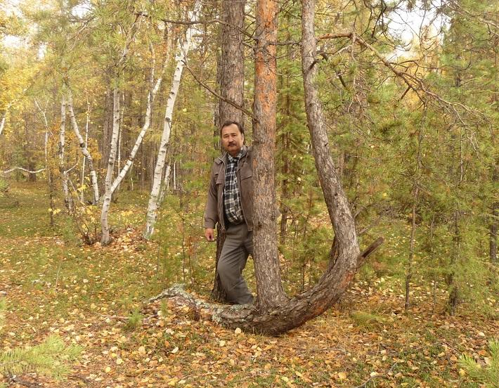 Там, где растут деревья мутанты