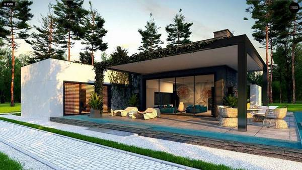красивые одноэтажные дома с террасой фото, фото 70