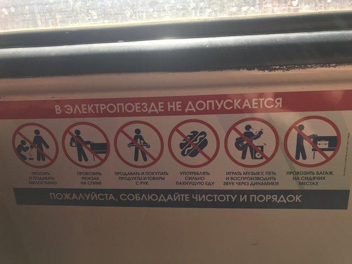 В современных поездах установили строгие правила проезда. Но, как говорится, пассажиры их видели в одном известном месте девушки, купе, плацкарт, поезд, прикол, ржд, россия, юмор