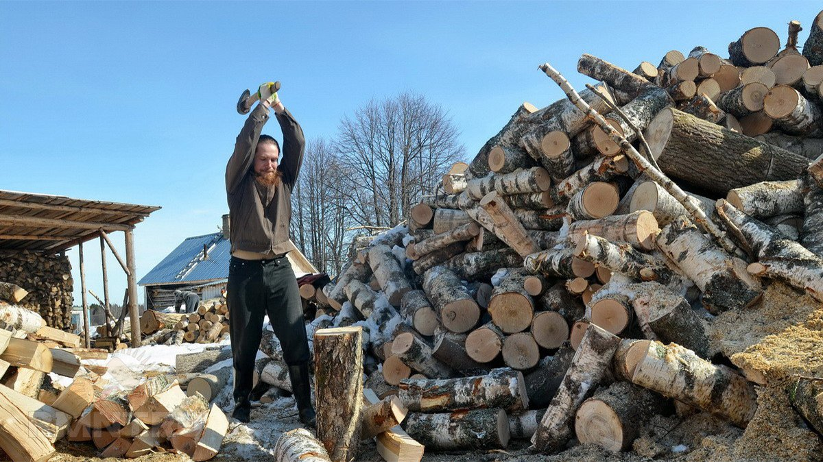 Картинка мужик колет дрова