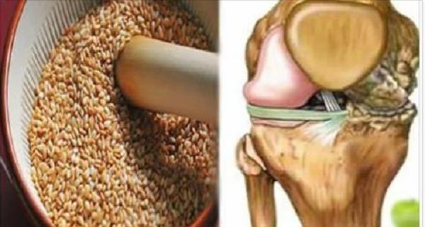 Семена, которые восстанавливают сухожилия и снимают боль в коленях