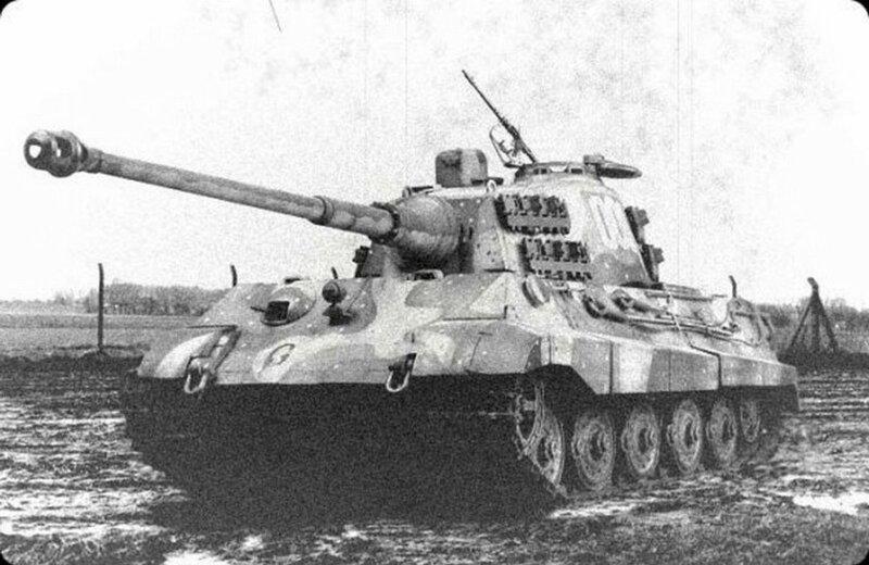 Джунгли для «Тигров» и «Пантер».Почему немецкая техника оказалась не готова сражаться с СССР