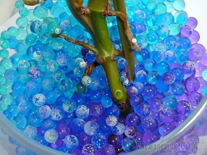Как правильно использовать аквагрунт для цветов