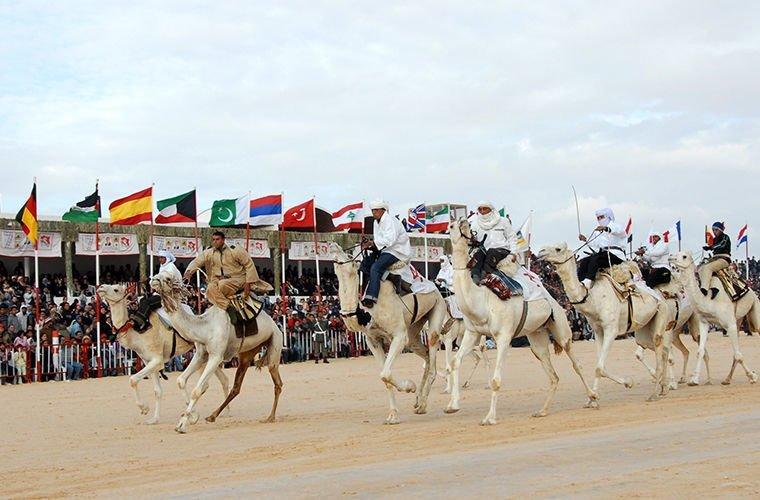 Они обожают верблюжьи бега в мире, люди, обычай, правила, русские, традиции, тунис, факты