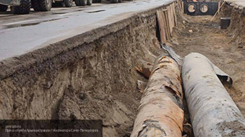 Рабочие Саратова нашли останки женщины в пальто недалеко от трассы