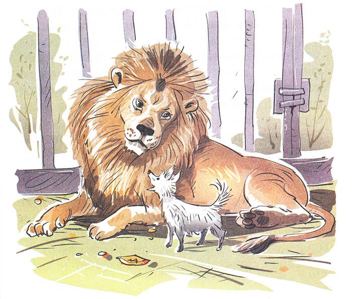 белолицых картинки карандашом лев и собачка забавно наблюдать