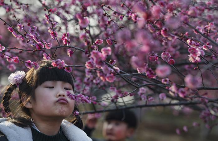 Фото: www.ecoportal.su