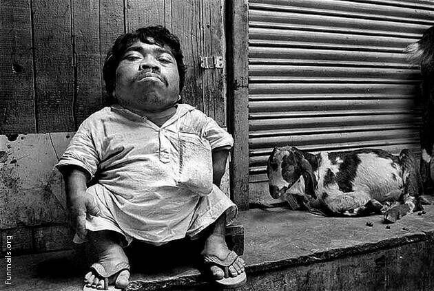 Самый маленький человек на планете: топ 10 люди,маленькие люди,мир,рост