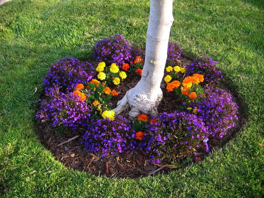 Цветник под пологом деревьев