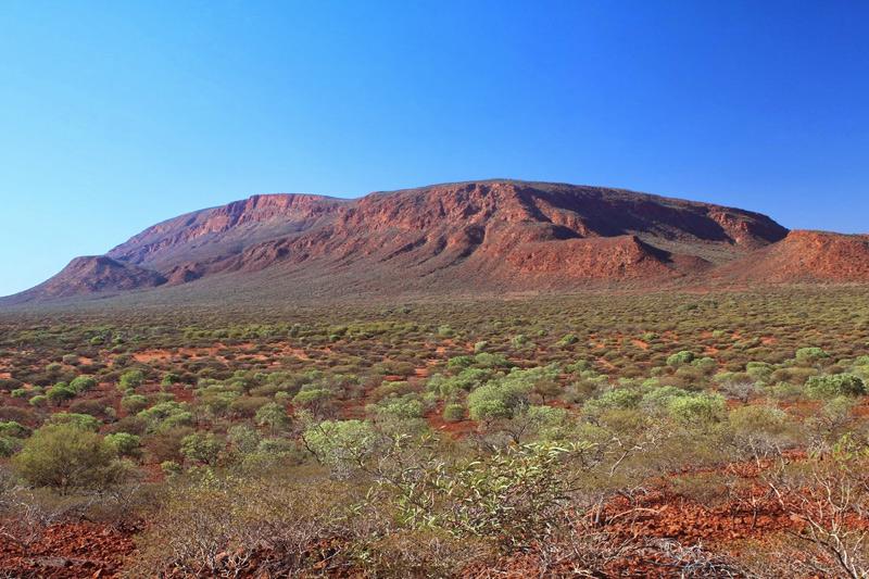 Камень в лесу: самые огромные монолиты на Земле монолиты,Пространство,самые большие камни,самые большие монолиты,самые крупные монолиты