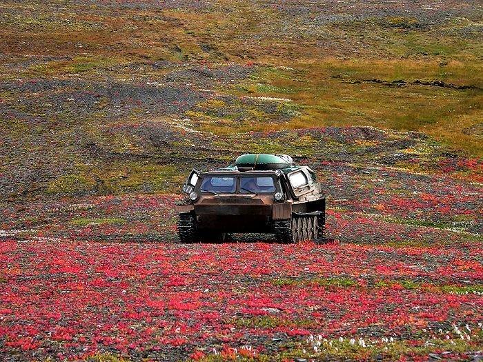 Новая Земля: как живётся на одном из самых северных архипелагов Русской Арктики