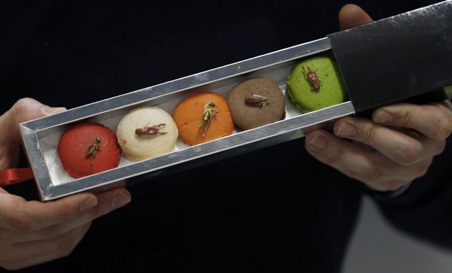 13 самых экстремальных блюд мира
