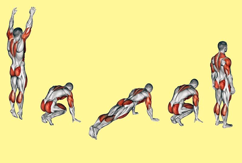 Техника Берпи: красивое тело без спортзала!