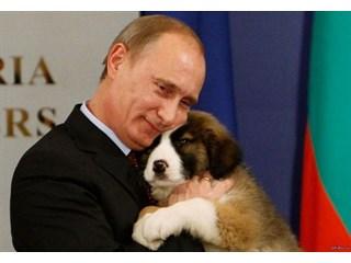 Путин - вождь мировой контрреволюции