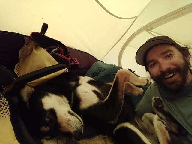 Альпинисты не верили своим глазам: на высоте 5500 метров к ним навстречу шла собака! истории из жизни