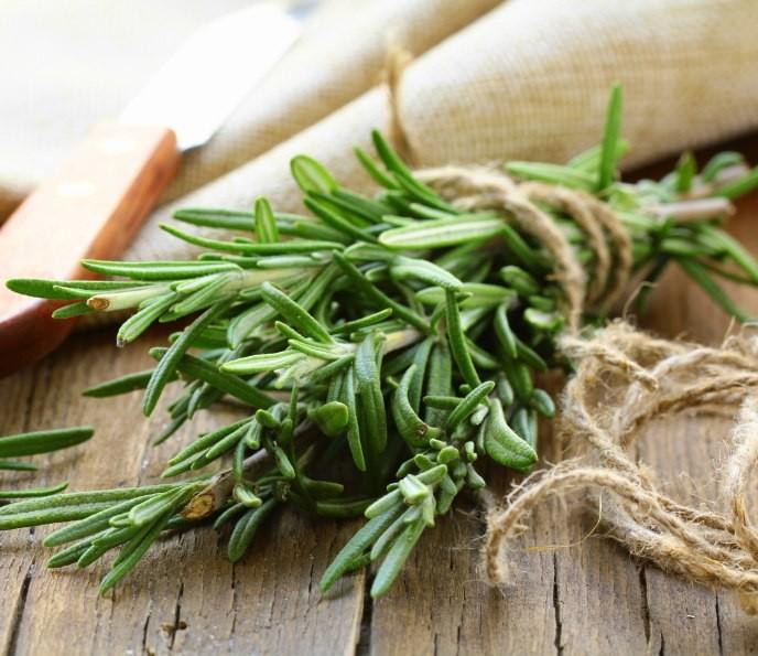 Это растение улучшает память и предотвращает болезнь Альцгеймера