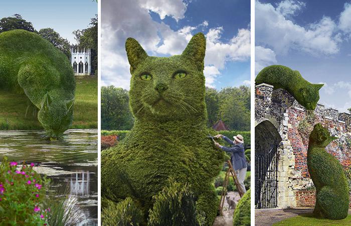 Коты в английских парках: По…