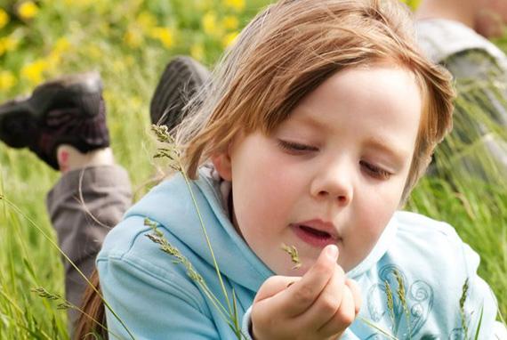 Можно ли вылечить аллергию навсегда?